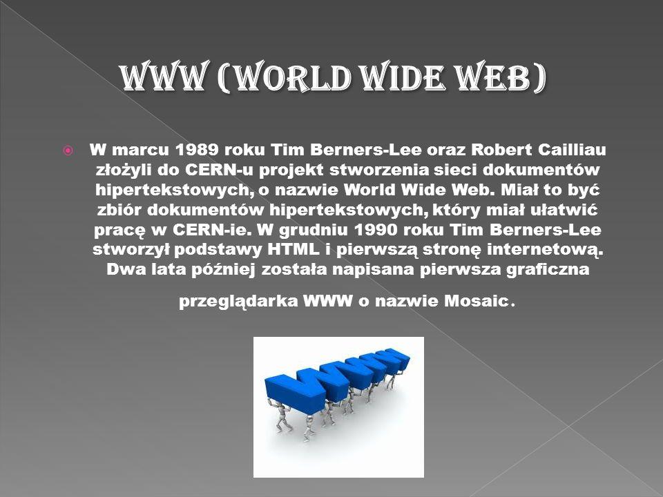 W marcu 1989 roku Tim Berners-Lee oraz Robert Cailliau złożyli do CERN-u projekt stworzenia sieci dokumentów hipertekstowych, o nazwie World Wide Web.