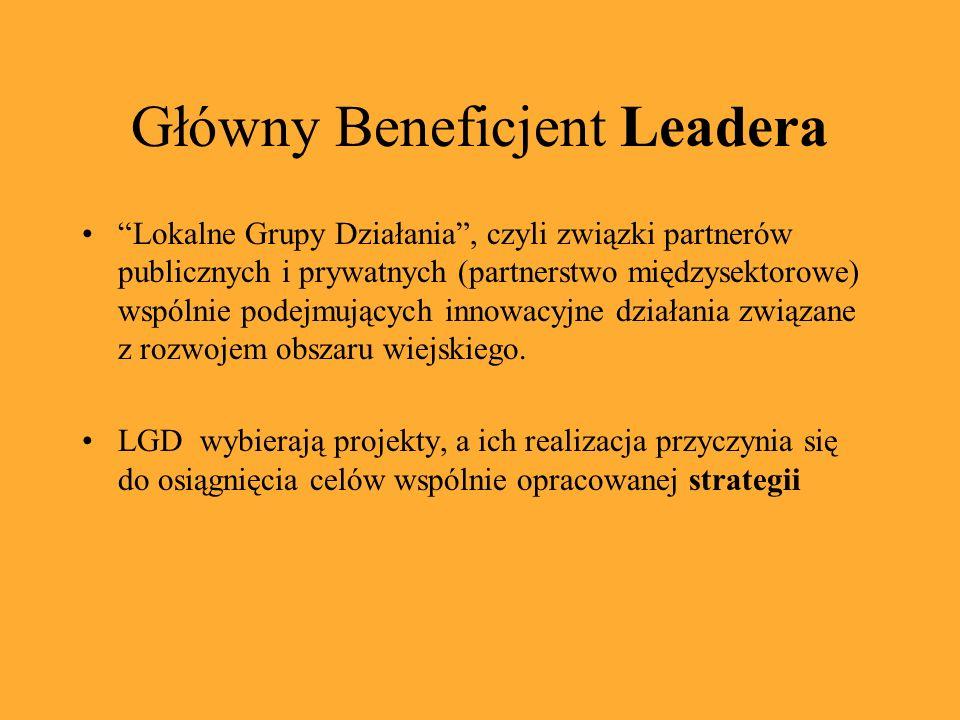 Główny Beneficjent Leadera Lokalne Grupy Działania, czyli związki partnerów publicznych i prywatnych (partnerstwo międzysektorowe) wspólnie podejmując