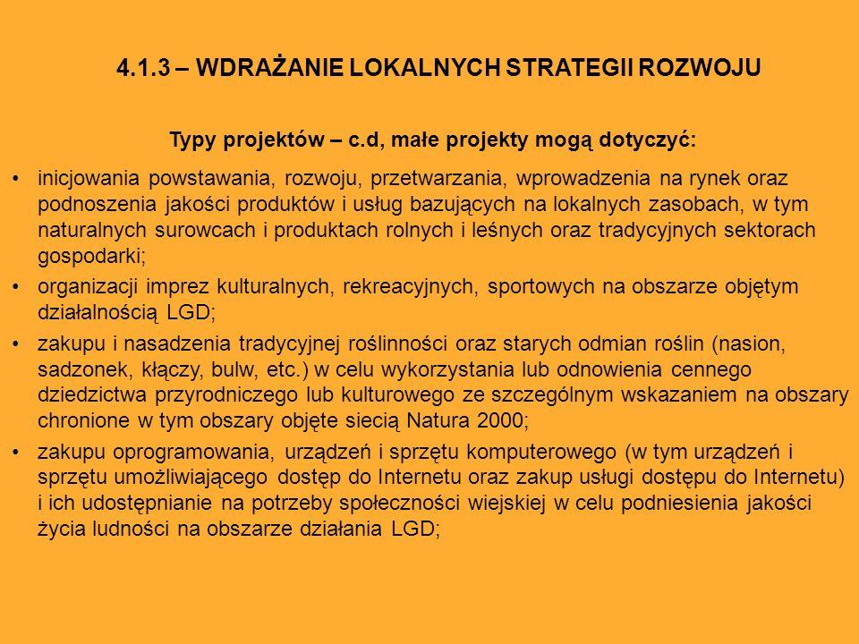 Typy projektów – c.d, małe projekty mogą dotyczyć: inicjowania powstawania, rozwoju, przetwarzania, wprowadzenia na rynek oraz podnoszenia jakości pro