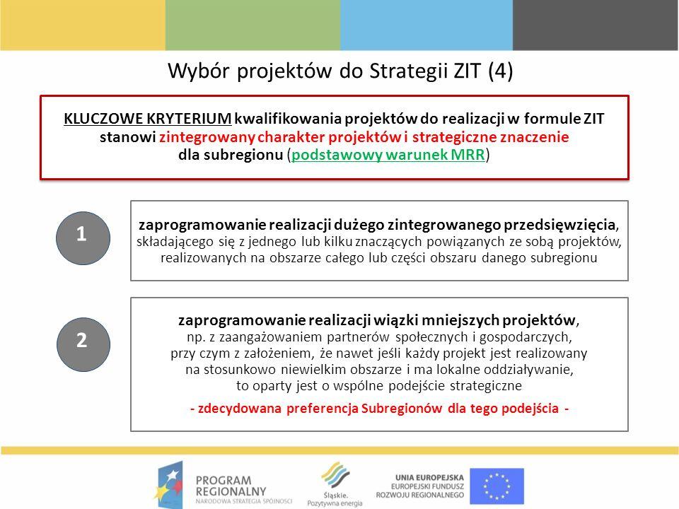 zaprogramowanie realizacji dużego zintegrowanego przedsięwzięcia, składającego się z jednego lub kilku znaczących powiązanych ze sobą projektów, reali