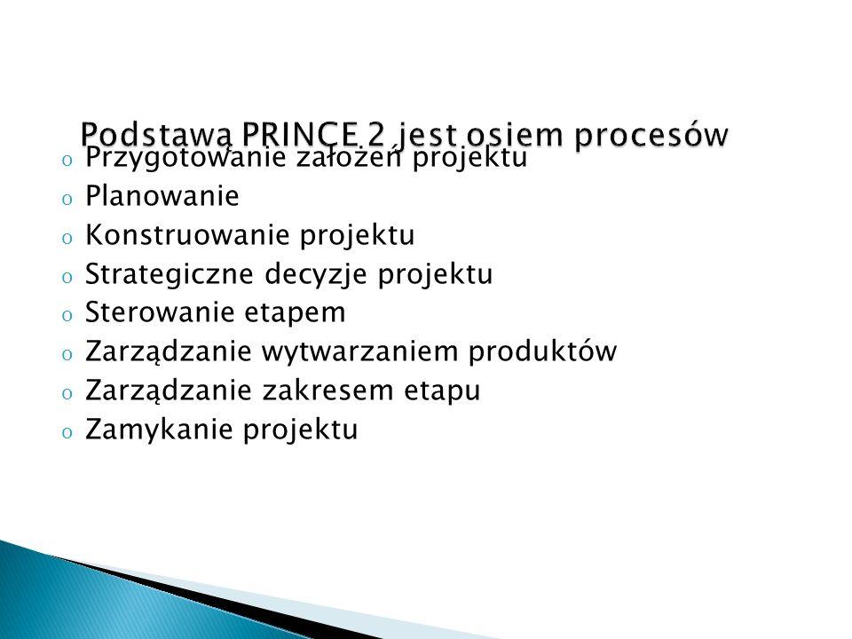 o Przygotowanie założeń projektu o Planowanie o Konstruowanie projektu o Strategiczne decyzje projektu o Sterowanie etapem o Zarządzanie wytwarzaniem