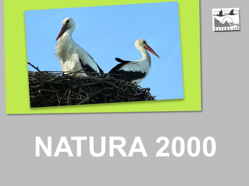 NATURA 2000 to spójna europejska sieć ekologiczna, której celem jest zachowanie rodzajów siedlisk przyrodniczych oraz gatunków ważnych dla Wspólnoty.