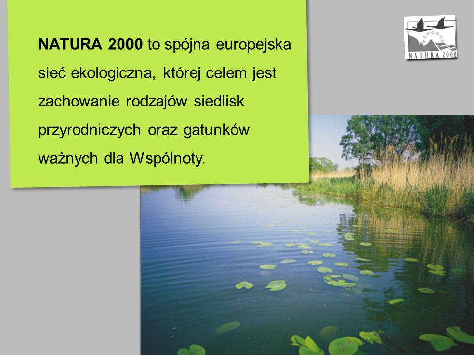 OCHRONA PRZYRODY W UNII EUROPEJSKIEJ Strategia Zrównoważonego Rozwoju – sieć obszarów Natura 2000: ochrona zasobów naturalnych i różnorodności biologicznej zahamowanie spadku różnorodności biologicznej do roku 2010 skuteczna ochrona najważniejszych typów siedlisk oraz gatunków zwierząt i roślin Koncepcja sieci Natura 2000: powstała w oparciu o rozpoznanie dwóch niepokojących zjawisk: 1.