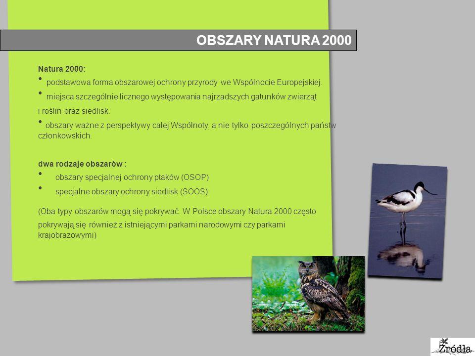 OBSZARY NATURA 2000 Natura 2000: podstawowa forma obszarowej ochrony przyrody we Wspólnocie Europejskiej. miejsca szczególnie licznego występowania na
