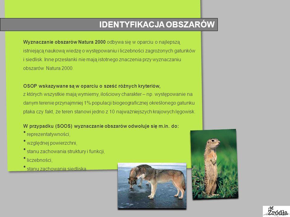 IDENTYFIKACJA OBSZARÓW Wyznaczanie obszarów Natura 2000 odbywa się w oparciu o najlepszą istniejącą naukową wiedzę o występowaniu i liczebności zagroż
