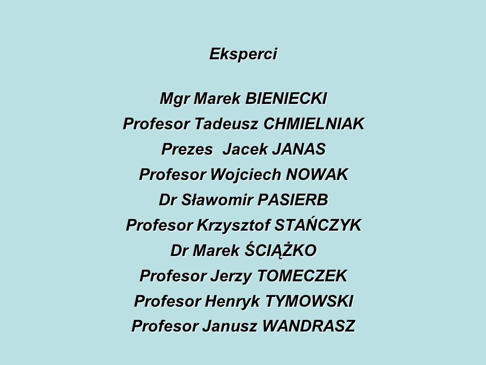 Eksperci Mgr Marek BIENIECKI Profesor Tadeusz CHMIELNIAK Prezes Jacek JANAS Profesor Wojciech NOWAK Dr Sławomir PASIERB Profesor Krzysztof STAŃCZYK Dr