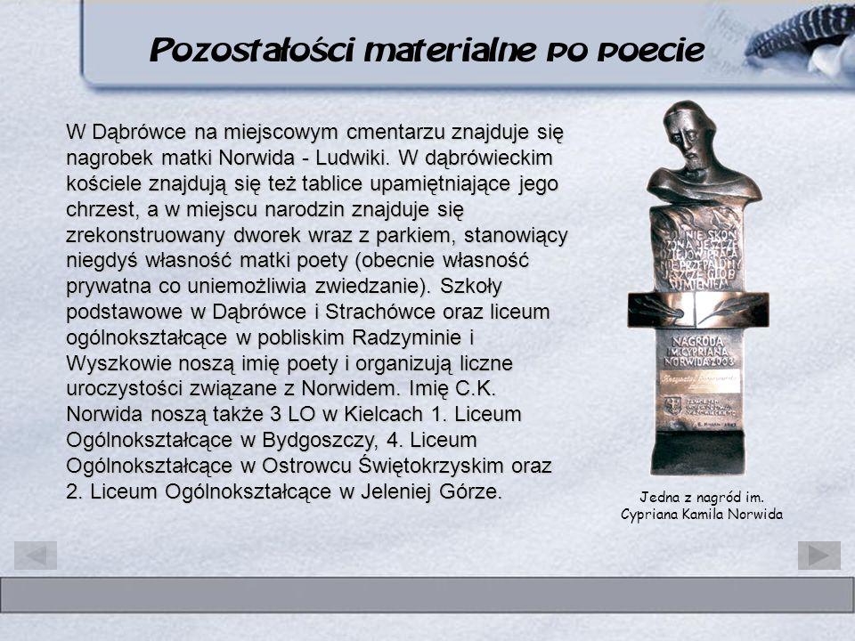 W Dąbrówce na miejscowym cmentarzu znajduje się nagrobek matki Norwida - Ludwiki. W dąbrówieckim kościele znajdują się też tablice upamiętniające jego