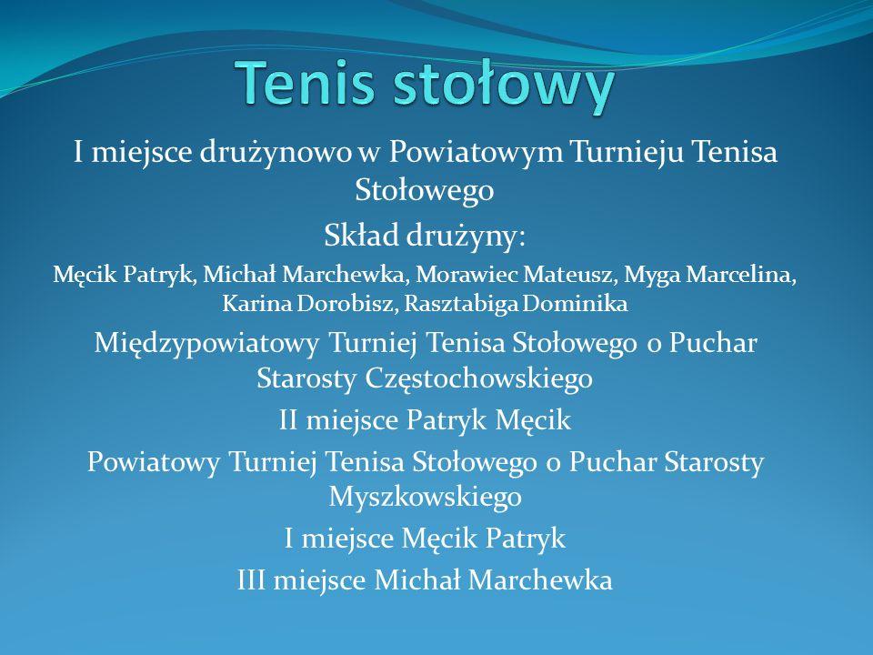 I miejsce drużynowo w Powiatowym Turnieju Tenisa Stołowego Skład drużyny: Męcik Patryk, Michał Marchewka, Morawiec Mateusz, Myga Marcelina, Karina Dor