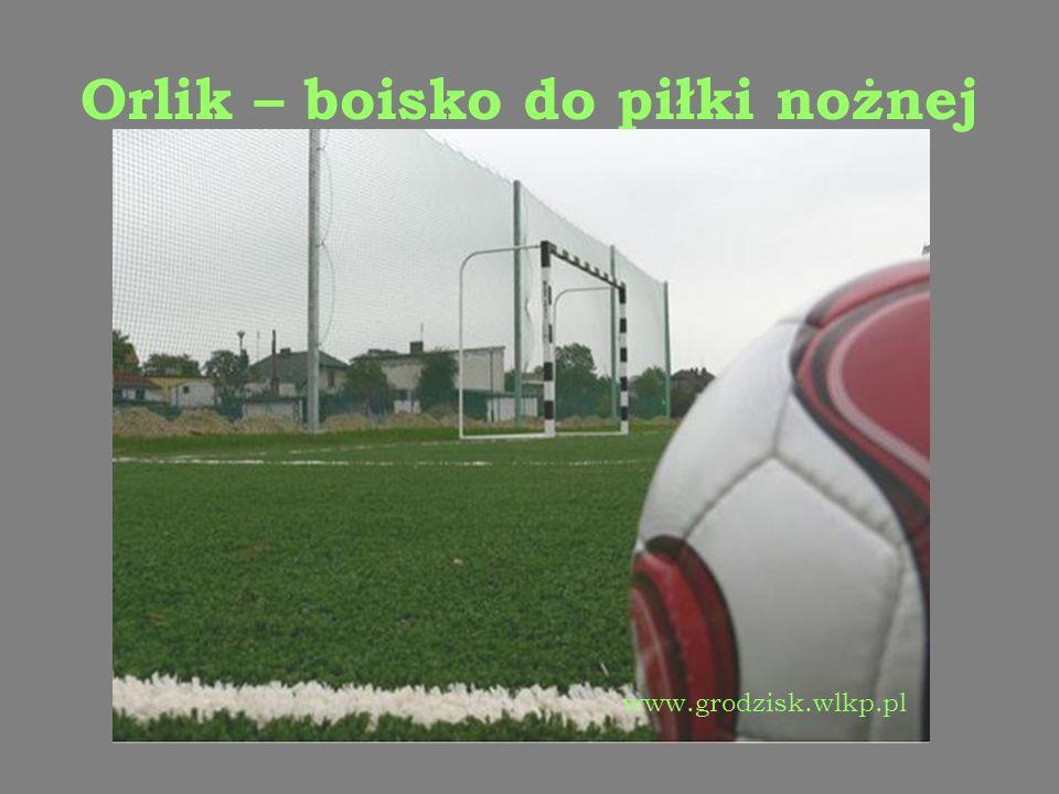Orlik – boisko do piłki nożnej www.grodzisk.wlkp.pl