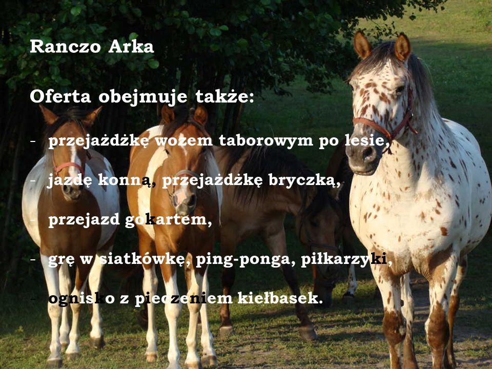 Ranczo Arka Oferta obejmuje także: - przejażdżkę wozem taborowym po lesie, - jazdę konną, przejażdżkę bryczką, - przejazd gokartem, - grę w siatkówkę, ping-ponga, piłkarzyki, - ognisko z pieczeniem kiełbasek.