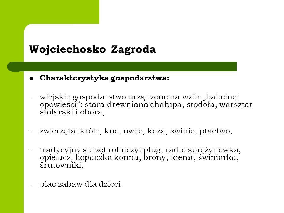 Wojciechosko Zagroda Charakterystyka gospodarstwa: - wiejskie gospodarstwo urządzone na wzór babcinej opowieści: stara drewniana chałupa, stodoła, war
