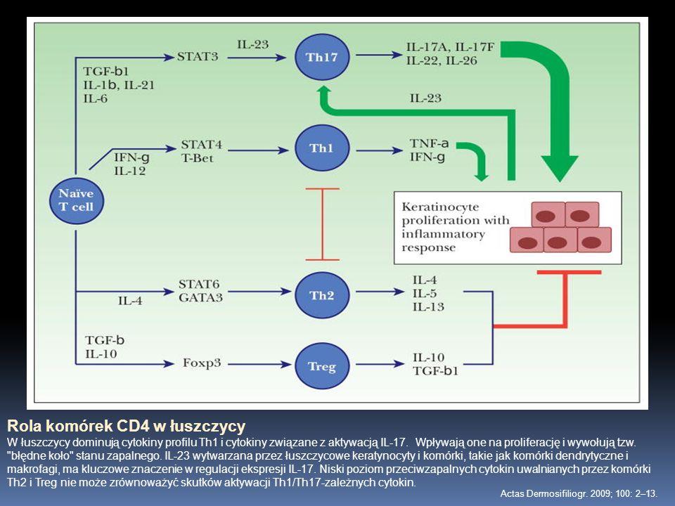 Rola komórek CD4 w łuszczycy W łuszczycy dominują cytokiny profilu Th1 i cytokiny związane z aktywacją IL-17. Wpływają one na proliferację i wywołują