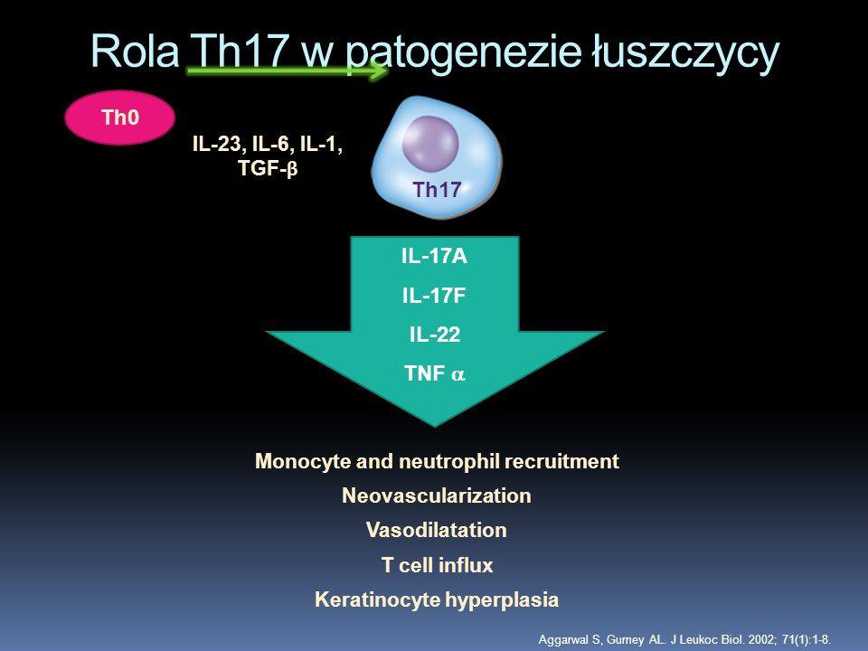 Rola Th17 w patogenezie łuszczycy Th17 IL-17A IL-17F IL-22 TNF Aggarwal S, Gurney AL. J Leukoc Biol. 2002; 71(1):1-8. Monocyte and neutrophil recruitm