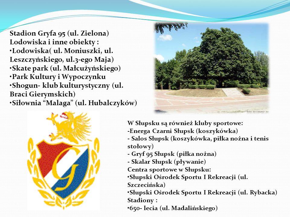 W Słupsku są również kluby sportowe: -Energa Czarni Słupsk (koszykówka) - Salos Słupsk (koszykówka, piłka nożna i tenis stołowy) - Gryf 95 Słupsk (pił