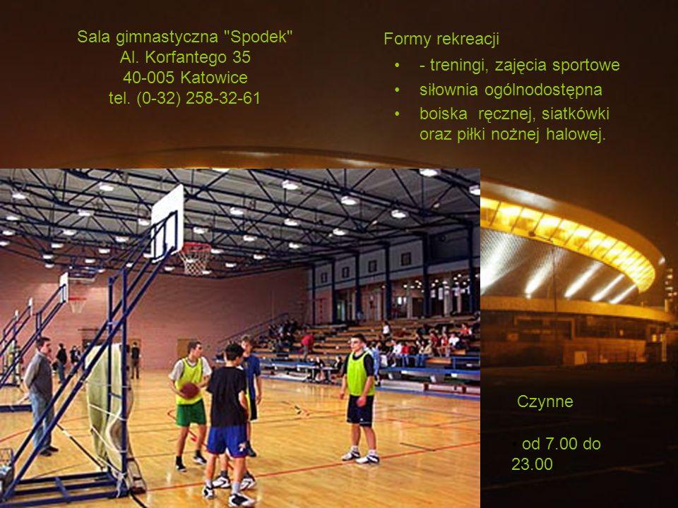 Cennik 8 zł (bilet normalny) i 4 zł (bilet ulgowy) Lodowisko Spodek Al.