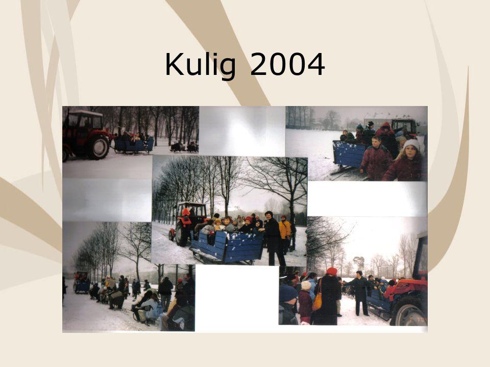 Kulig 2004