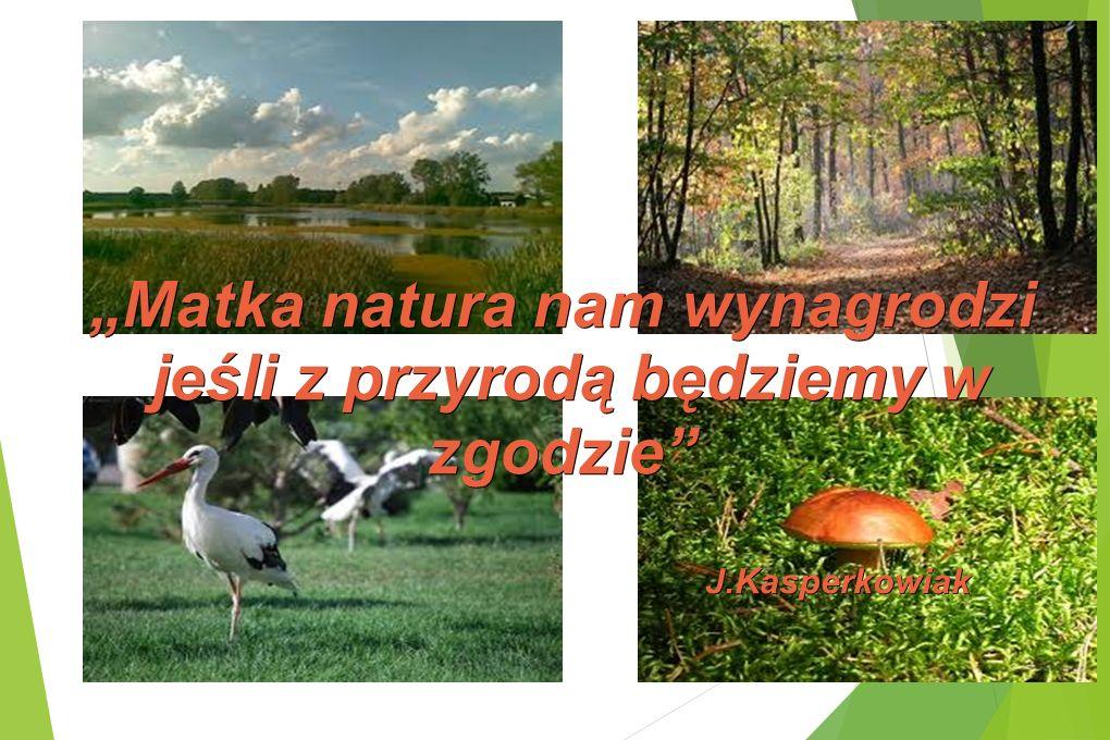 Matka natura nam wynagrodzi jeśli z przyrodą będziemy w zgodzie jeśli z przyrodą będziemy w zgodzie J.Kasperkowiak J.Kasperkowiak
