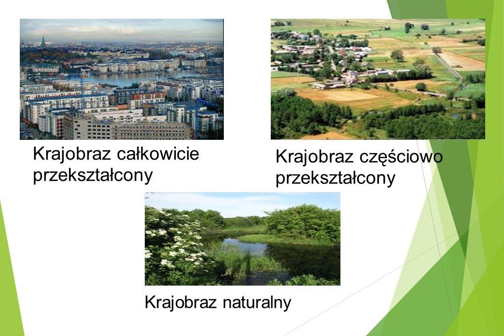 Krajobraz całkowicie przekształcony Krajobraz częściowo przekształcony Krajobraz naturalny