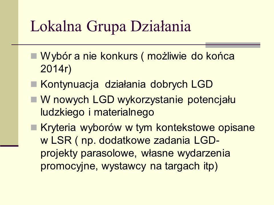 Lokalna Grupa Działania Wybór a nie konkurs ( możliwie do końca 2014r) Kontynuacja działania dobrych LGD W nowych LGD wykorzystanie potencjału ludzkie