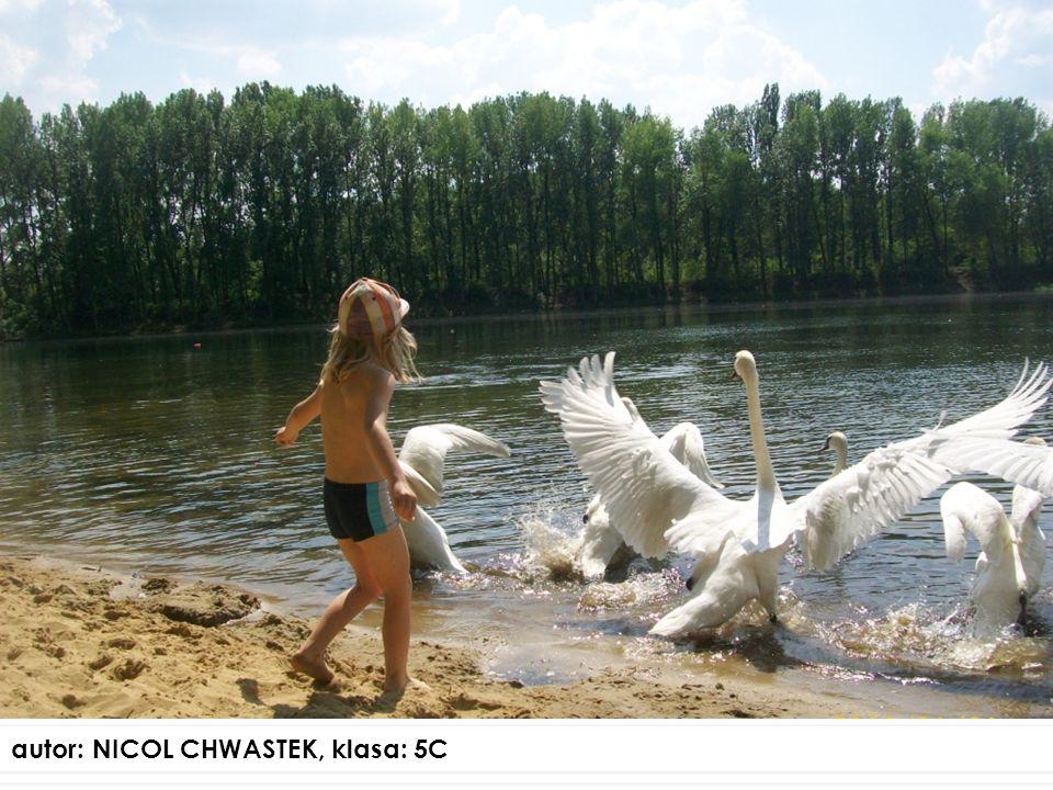 autor: NICOL CHWASTEK, klasa: 5C