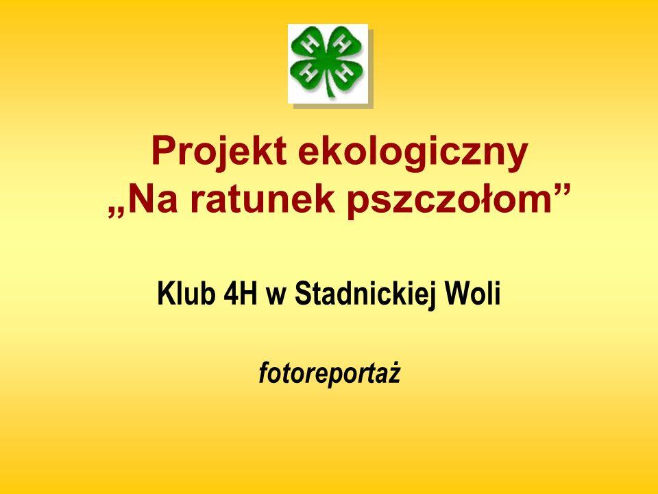 Projekt ekologiczny Na ratunek pszczołom Klub 4H w Stadnickiej Woli fotoreportaż