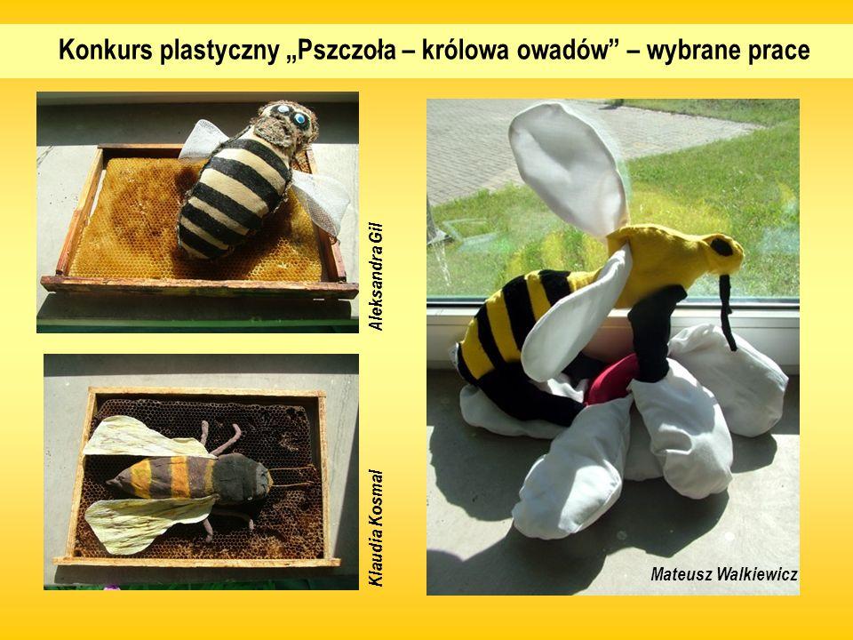 Konkurs plastyczny Pszczoła – królowa owadów – wybrane prace Aleksandra Gil Klaudia Kosmal Mateusz Walkiewicz