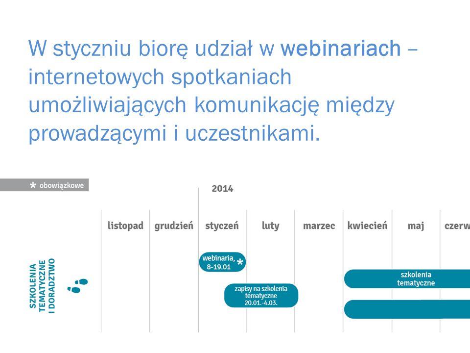 W styczniu biorę udział w webinariach – internetowych spotkaniach umożliwiających komunikację między prowadzącymi i uczestnikami.