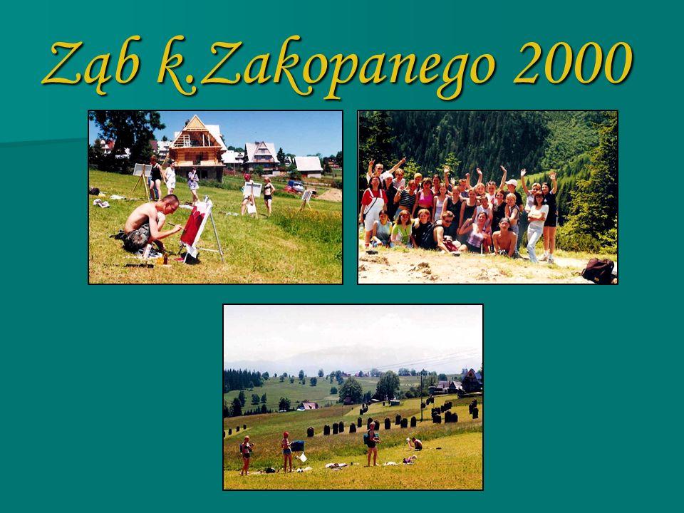 Bustryk k.Zakopanego 2001