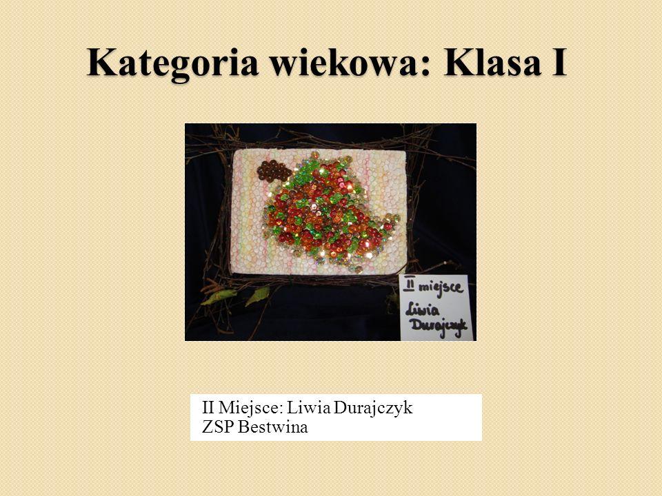 Kategoria wiekowa: Klasa I II Miejsce: Liwia Durajczyk ZSP Bestwina