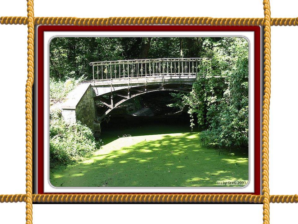 Piękną aleją lipową z ciągnącymi się wzdłuż niej kanałami w stylu holenderskim i francuskim idziemy wśród rododendronów i azalii,które przyciągają turystów z całej Polski