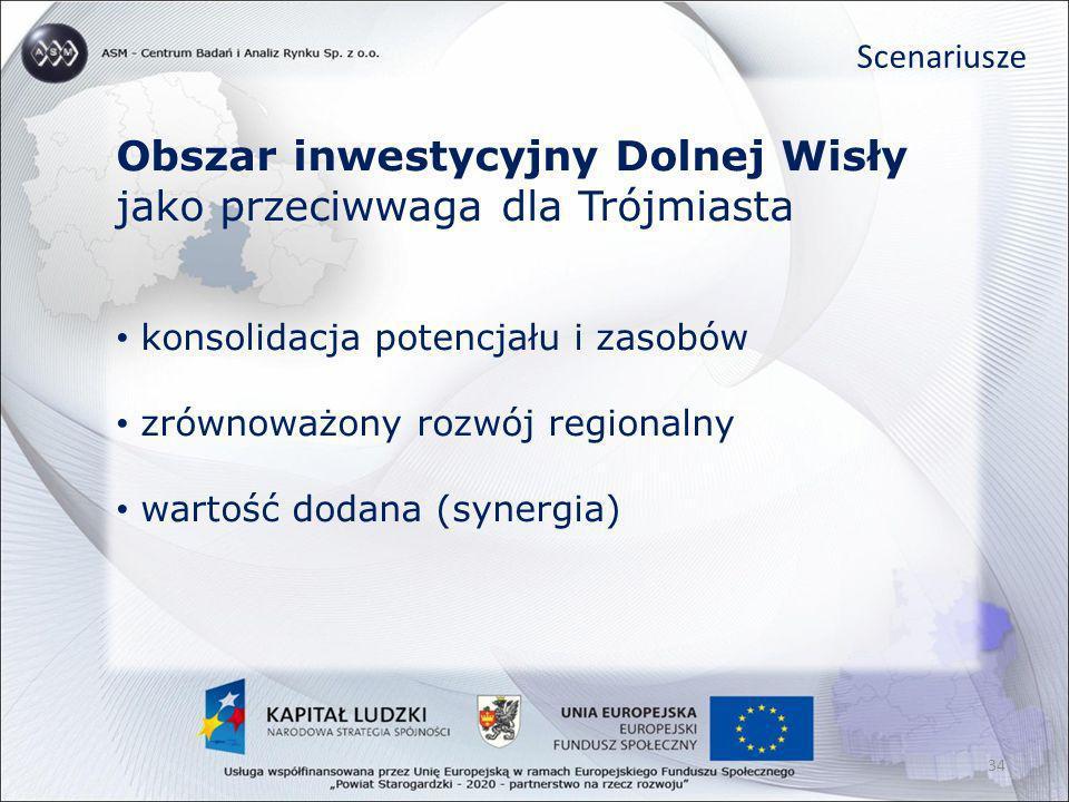 Obszar inwestycyjny Dolnej Wisły jako przeciwwaga dla Trójmiasta konsolidacja potencjału i zasobów zrównoważony rozwój regionalny wartość dodana (syne