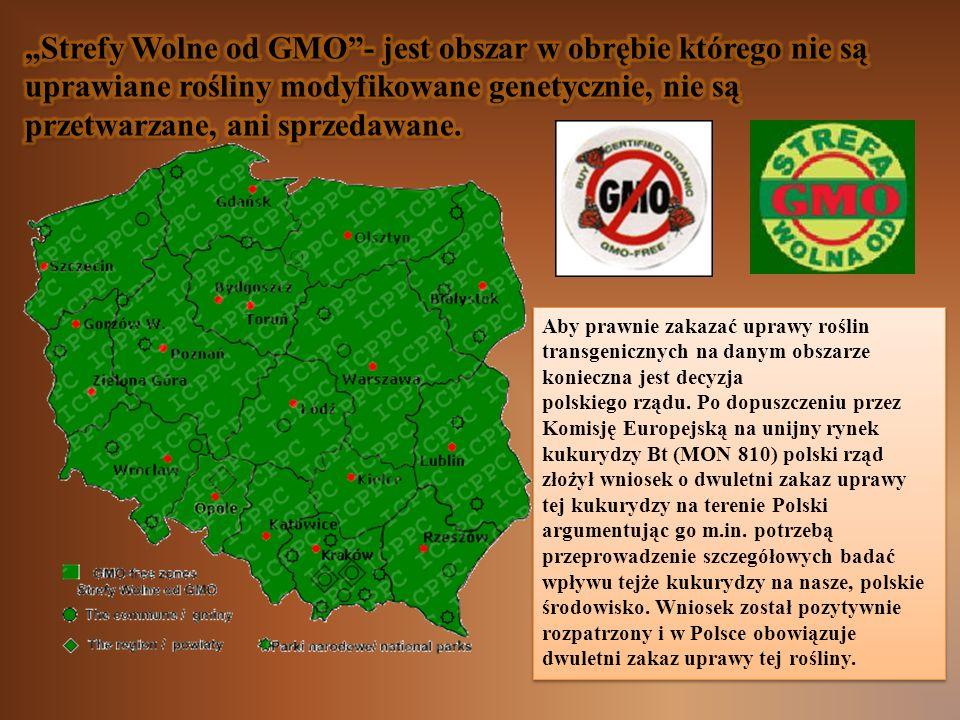 Aby prawnie zakazać uprawy roślin transgenicznych na danym obszarze konieczna jest decyzja polskiego rządu. Po dopuszczeniu przez Komisję Europejską n