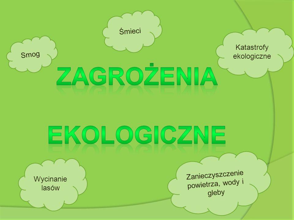 Katastrofy ekologiczne Ś m i e c i Z a n i e c z y s z c z e n i e p o w i e t r z a, w o d y i g l e b y Wycinanie lasów S m o g