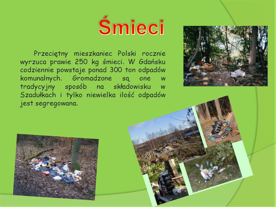 Przeciętny mieszkaniec Polski rocznie wyrzuca prawie 250 kg śmieci. W Gdańsku codziennie powstaje ponad 300 ton odpadów komunalnych. Gromadzone są one