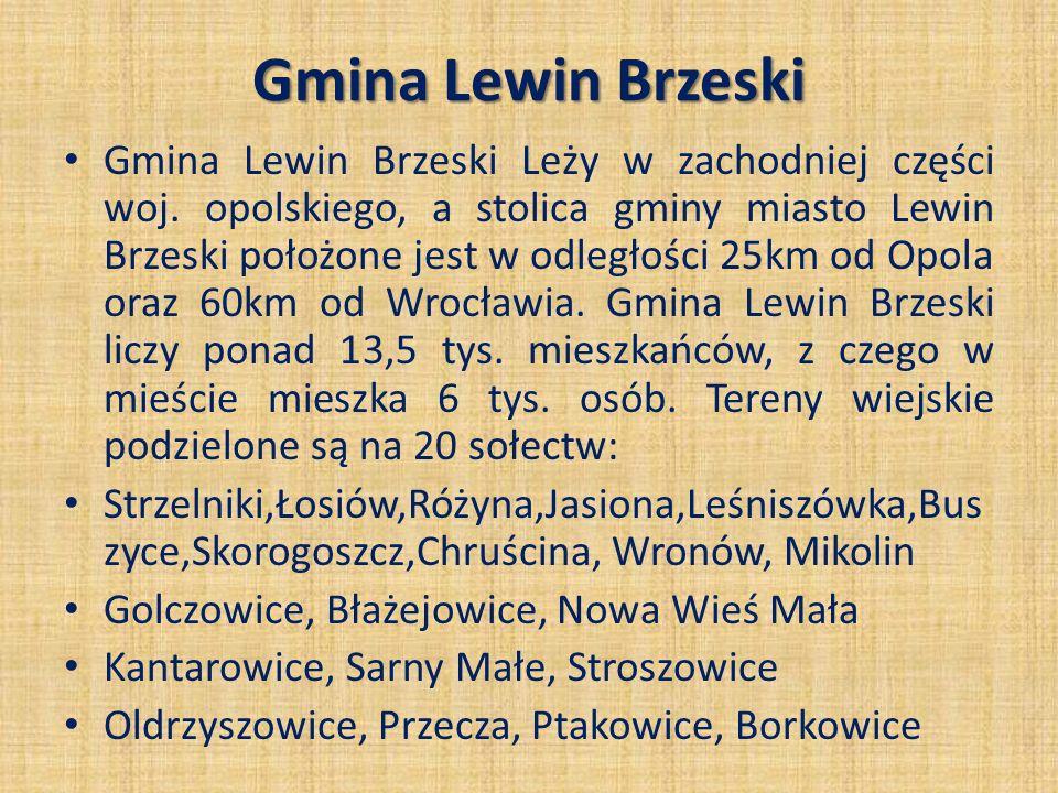 Gmina Lewin Brzeski Gmina Lewin Brzeski Leży w zachodniej części woj. opolskiego, a stolica gminy miasto Lewin Brzeski położone jest w odległości 25km