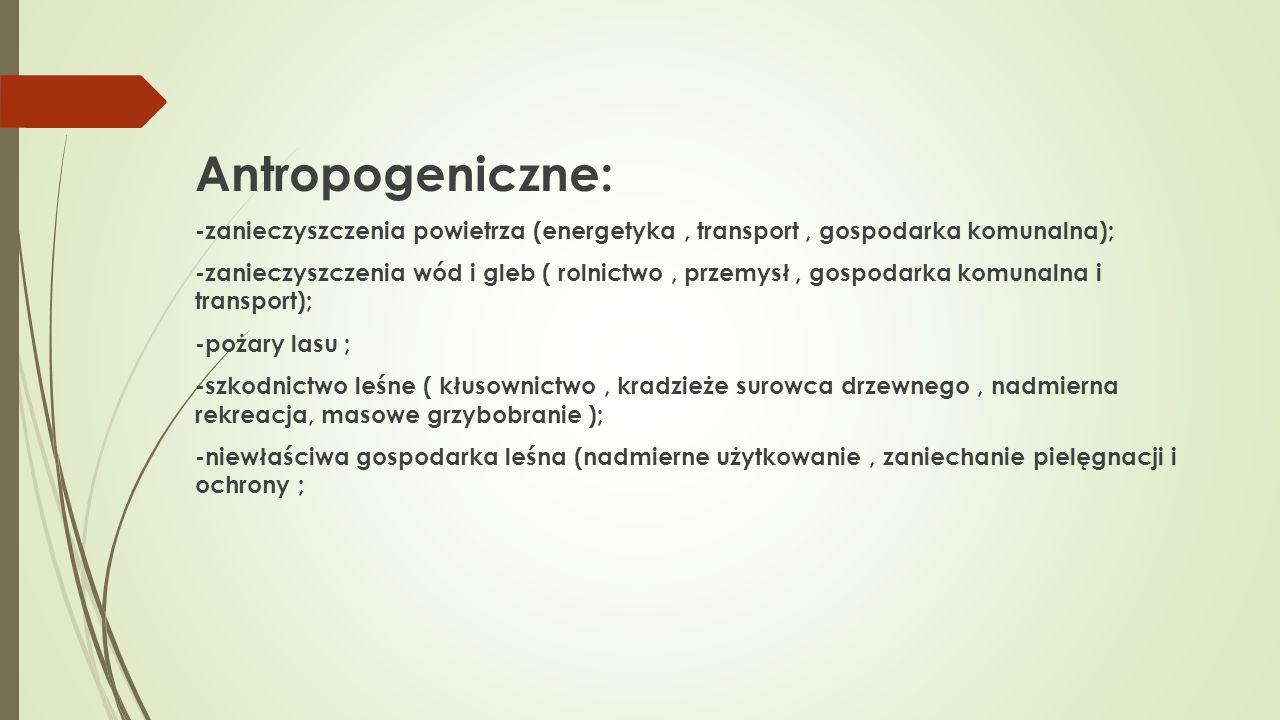 Antropogeniczne: -zanieczyszczenia powietrza (energetyka, transport, gospodarka komunalna); -zanieczyszczenia wód i gleb ( rolnictwo, przemysł, gospod