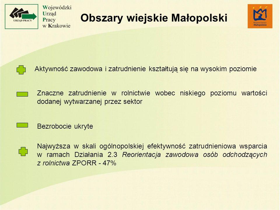 Obszary wiejskie Małopolski Znaczne zatrudnienie w rolnictwie wobec niskiego poziomu wartości dodanej wytwarzanej przez sektor Bezrobocie ukryte Najwyższa w skali ogólnopolskiej efektywność zatrudnieniowa wsparcia w ramach Działania 2.3 Reorientacja zawodowa osób odchodzących z rolnictwa ZPORR - 47% Aktywność zawodowa i zatrudnienie kształtują się na wysokim poziomie