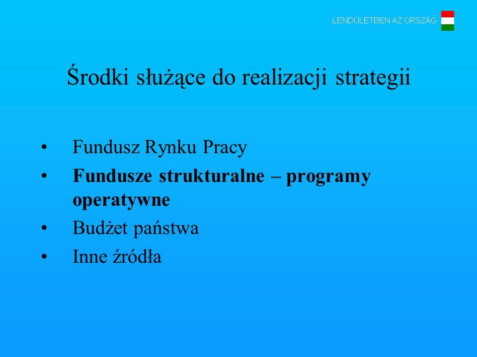 Środki służące do realizacji strategii Fundusz Rynku Pracy Fundusze strukturalne – programy operatywne Budżet państwa Inne źródła