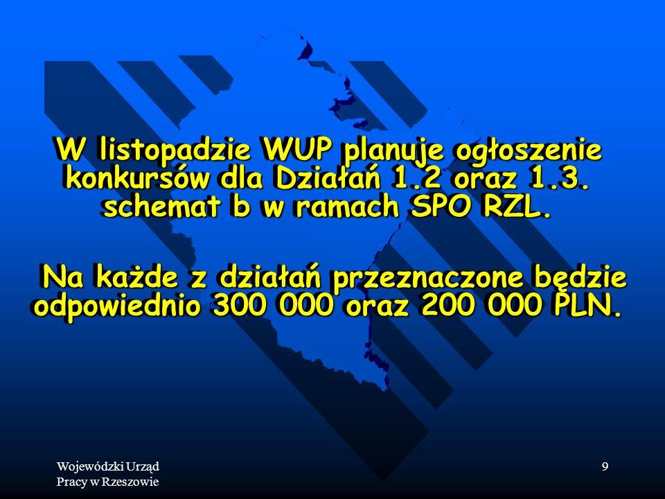 Wojewódzki Urząd Pracy w Rzeszowie 9 W listopadzie WUP planuje ogłoszenie konkursów dla Działań 1.2 oraz 1.3.