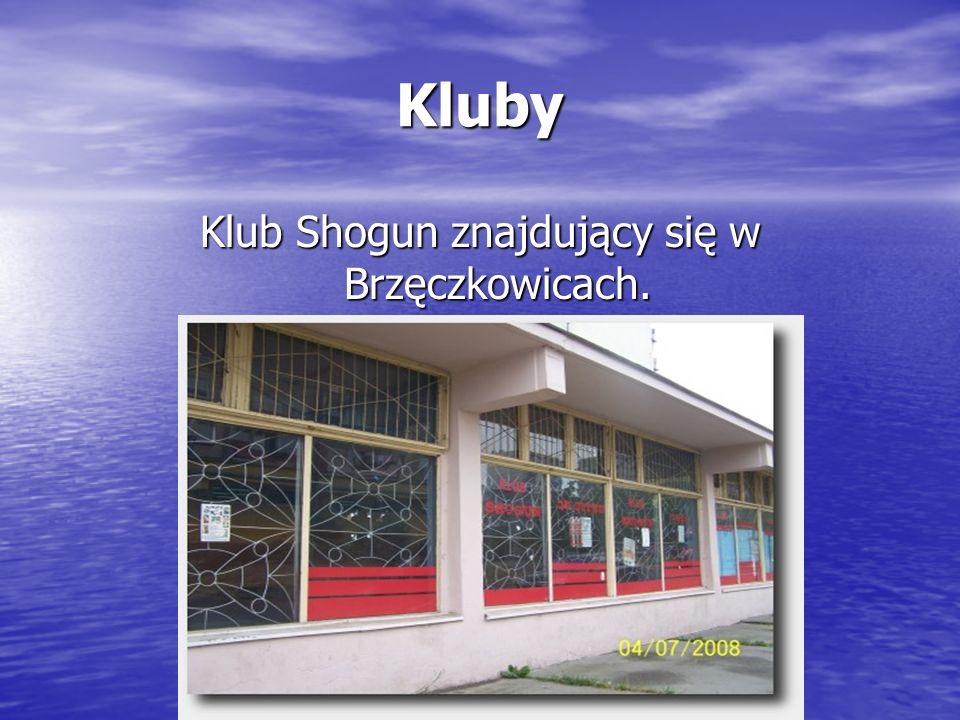Kluby Klub Shogun znajdujący się w Brzęczkowicach.