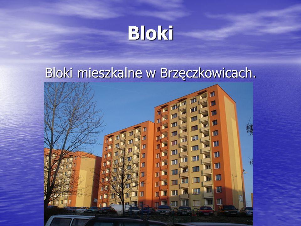 Bloki Bloki mieszkalne w Brzęczkowicach.