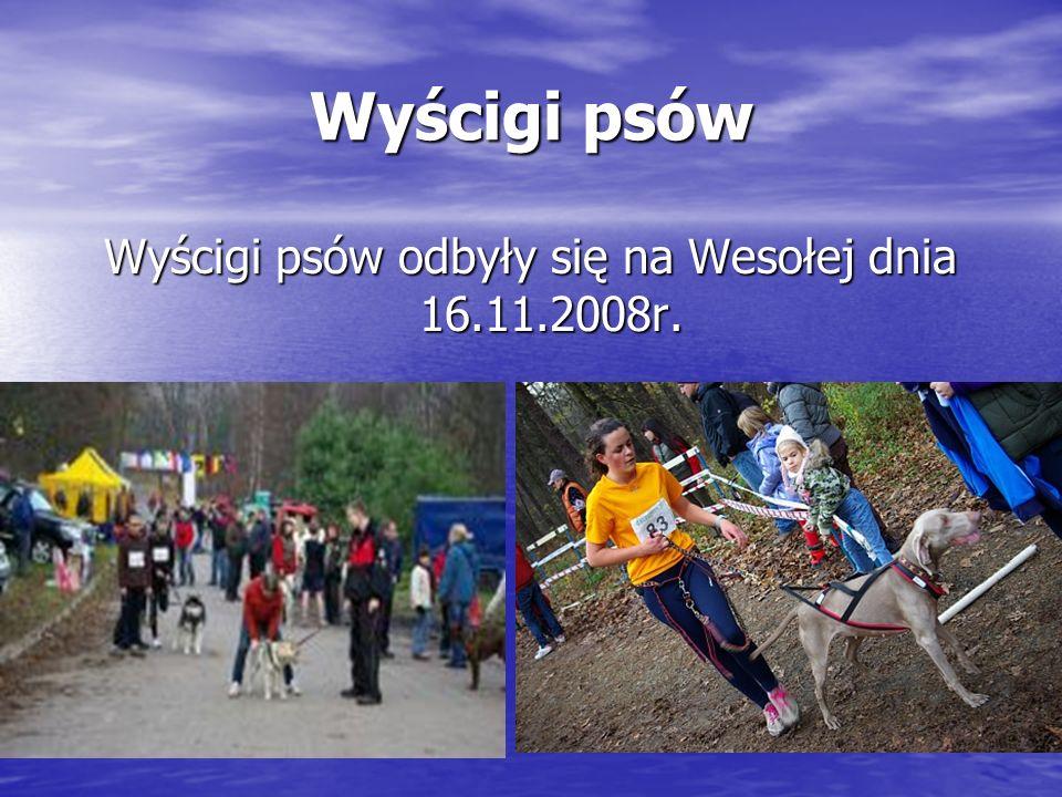 Wyścigi psów Wyścigi psów odbyły się na Wesołej dnia 16.11.2008r.