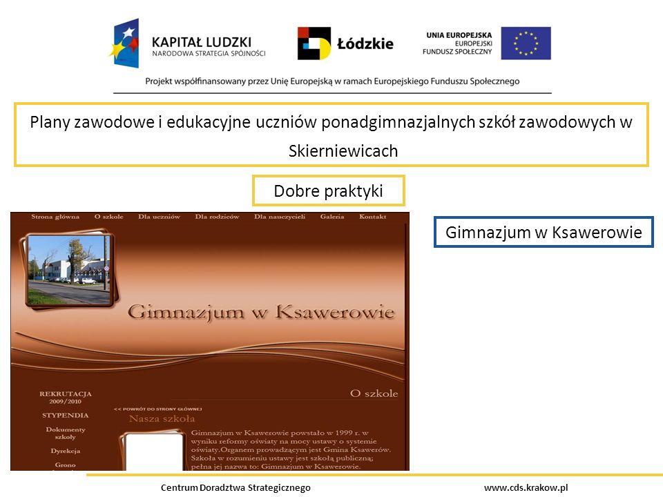 Centrum Doradztwa Strategicznego www.cds.krakow.pl Plany zawodowe i edukacyjne uczniów ponadgimnazjalnych szkół zawodowych w Skierniewicach Dobre prak