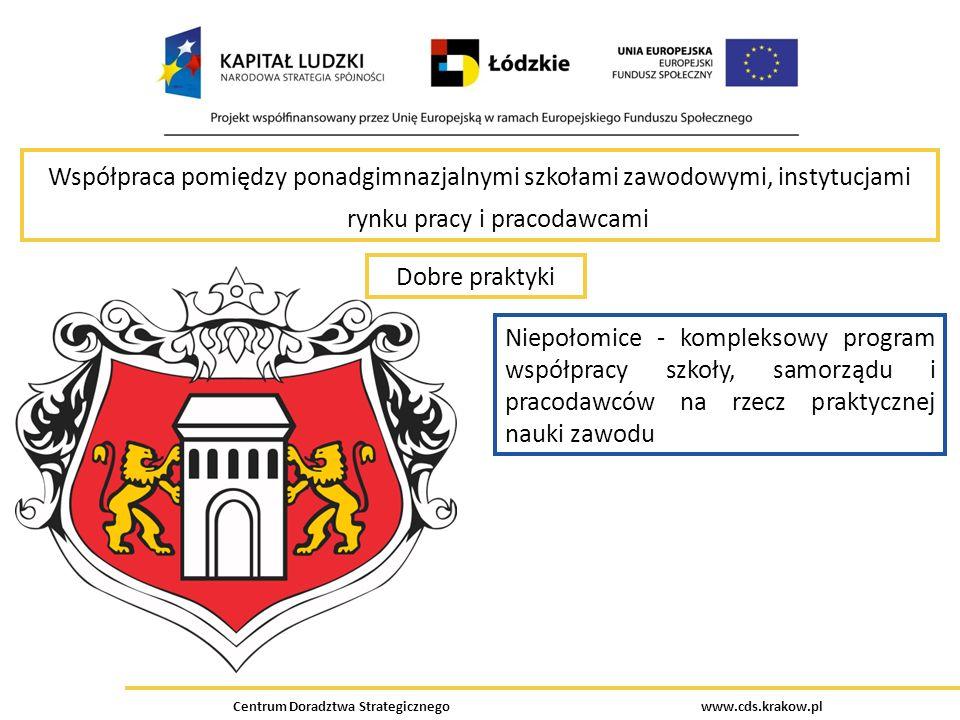 Centrum Doradztwa Strategicznego www.cds.krakow.pl Współpraca pomiędzy ponadgimnazjalnymi szkołami zawodowymi, instytucjami rynku pracy i pracodawcami