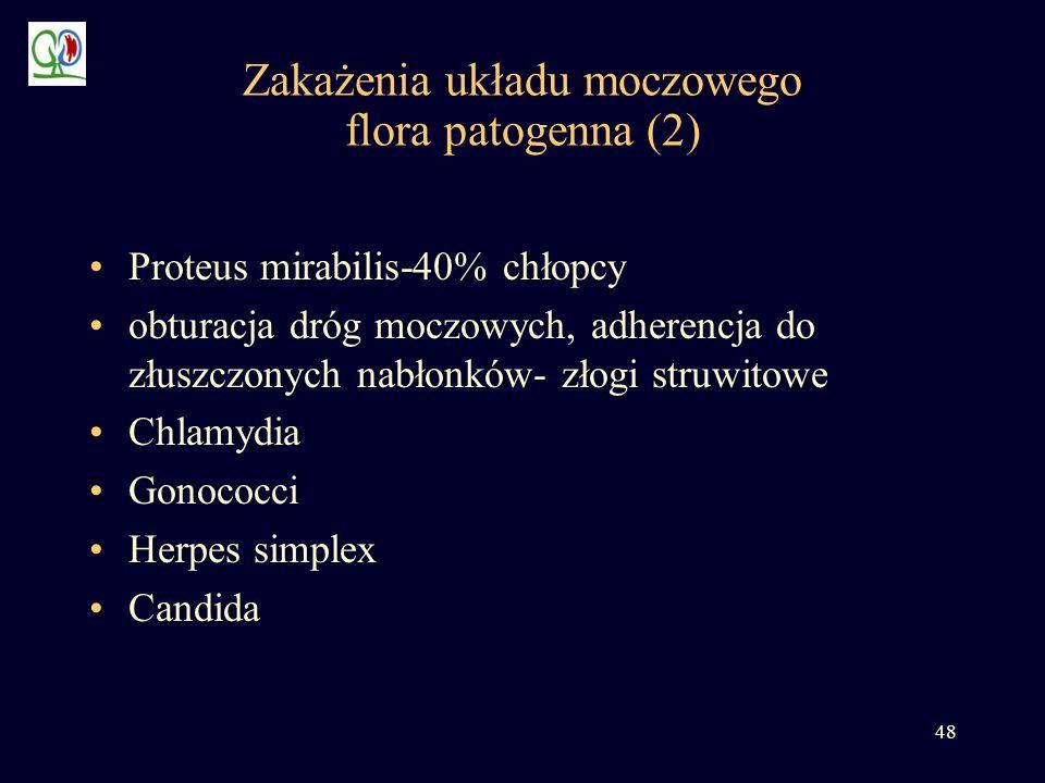 48 Zakażenia układu moczowego flora patogenna (2) Proteus mirabilis-40% chłopcy obturacja dróg moczowych, adherencja do złuszczonych nabłonków- złogi