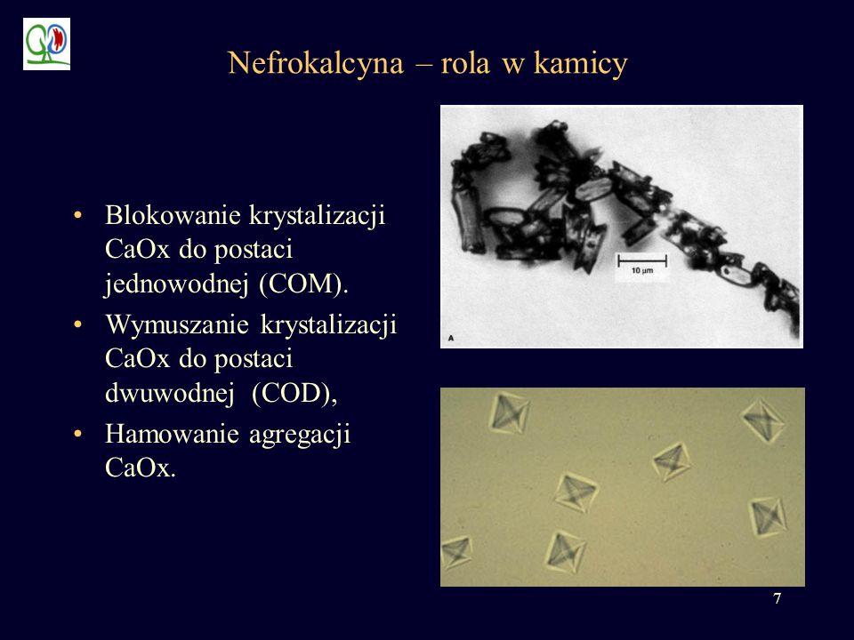 7 Nefrokalcyna – rola w kamicy Blokowanie krystalizacji CaOx do postaci jednowodnej (COM). Wymuszanie krystalizacji CaOx do postaci dwuwodnej (COD), H
