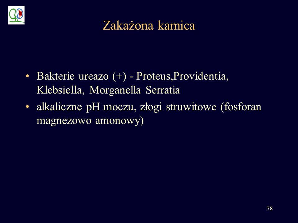 78 Zakażona kamica Bakterie ureazo (+) - Proteus,Providentia, Klebsiella, Morganella Serratia alkaliczne pH moczu, złogi struwitowe (fosforan magnezow