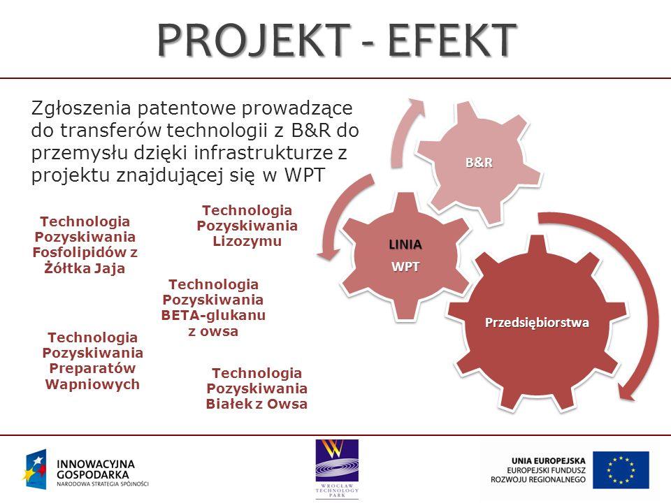 Technologia Pozyskiwania Fosfolipidów z Żółtka Jaja Technologia Pozyskiwania Lizozymu Technologia Pozyskiwania Preparatów Wapniowych Technologia Pozyskiwania BETA-glukanu z owsa Technologia Pozyskiwania Białek z Owsa Zgłoszenia patentowe prowadzące do transferów technologii z B&R do przemysłu dzięki infrastrukturze z projektu znajdującej się w WPT PROJEKT - EFEKT Przedsiębiorstwa LINIAWPT B&R