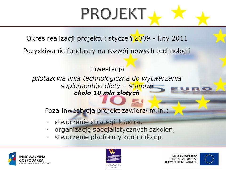 PROJEKT Okres realizacji projektu: styczeń 2009 - luty 2011 Pozyskiwanie funduszy na rozwój nowych technologii Inwestycja pilotażowa linia technologic