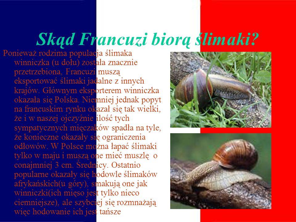 Ślimaki jadalne Oprócz ślimaków morskich, takich jak ślimak brzegowy (fr. bigorneau) czy rogaty ślimak falisty ( fr.bulot), jadane są także ślimaki lą